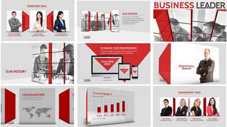 Business Leader 11779855 After Effects Template