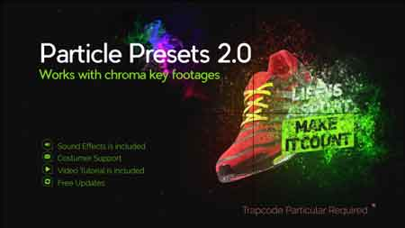 Particle Presets 21110458 After Effects Template