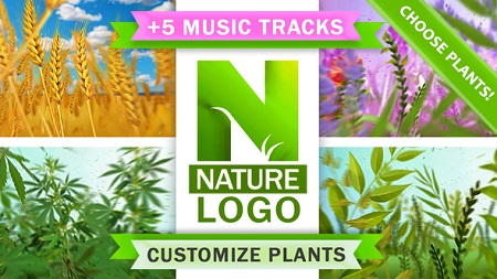 Nature Eco Plants Logo 22046864 After Effects Template Download