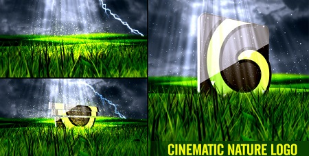 Nature Logo Cinematic 9207208 After Effects Template Download