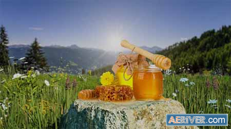 VideoHive Organic Product Intro 23664850 Free